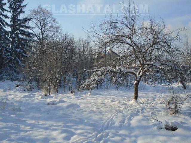 Снегът прекърши дървета и причини катастрофи