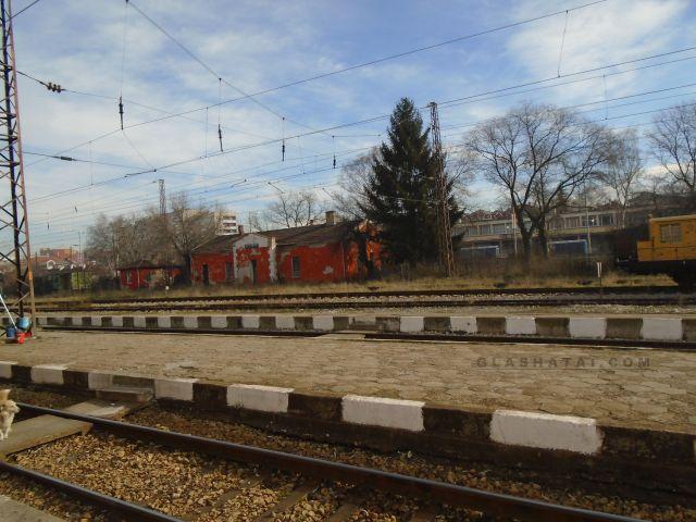 Паднали дървета спряха влаковете за Перник