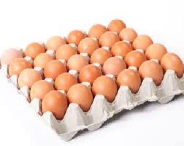 Изтеглят български яйца от пазара заради птичи грип