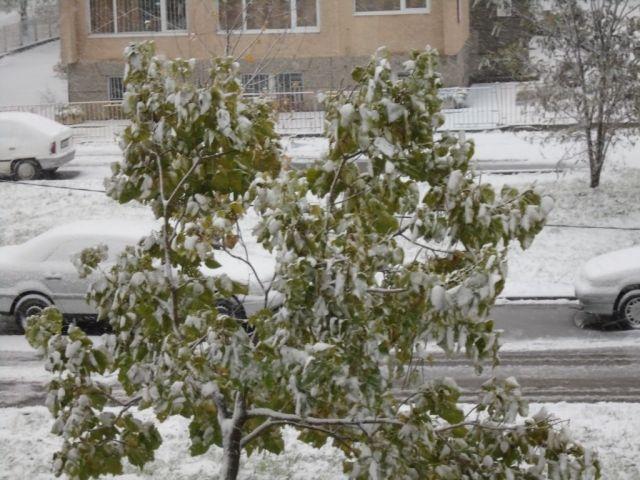 Валежи от дъжд и сняг предвиждат синоптици