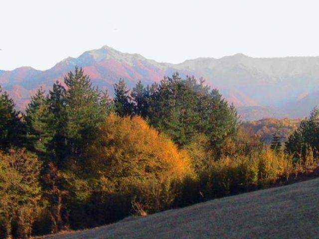 Днес идва есента
