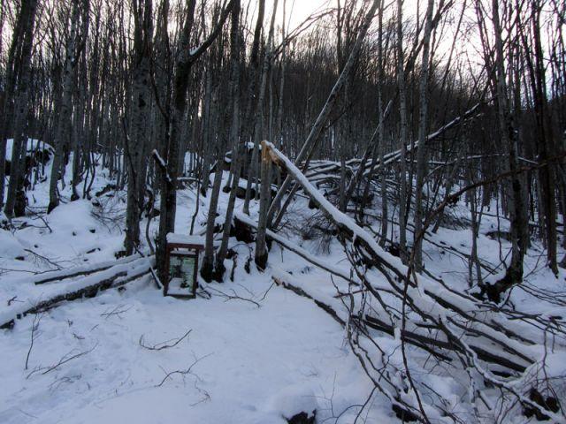 Ураганен вятър затвори Петрохан