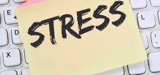 Невероятно! Ето с какво може да борим стреса