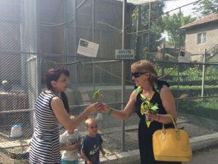 ГЕРБ-ерки раздаваха еньовски букети  в градския парк