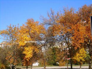 Златна есен или циганско лято ни очаква през октомври