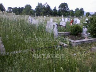 Високата трева на централните гробища притеснява граждани