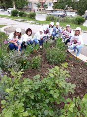 Цветна градинка в Мошино, дело на сръчните ръце на дамите от ГЕРБ