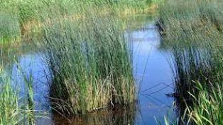 План  за защитена местност в Радомирско струва повече от 286 хиляди лева