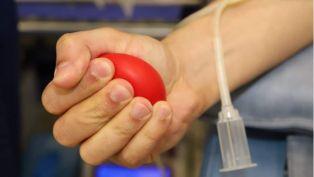Изпълнителната комисия на ГЕРБ организира кампания за даряване на кръвна плазма