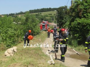 Борова гора е горяла в Радомирско