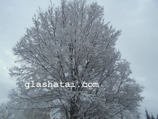 Зима е