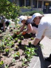 Цветна градина направиха дамите от ГЕРБ в пернишко село