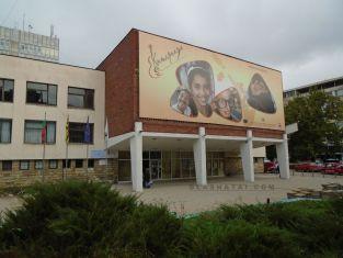 Куклен театър за костенурчето Франклин на вниманието на малките в Перник