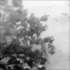 Страшна буря в Трънско