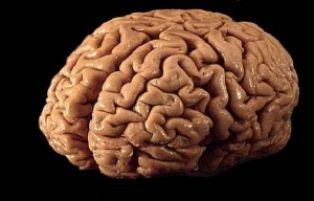 Паметта съхранява по-малко информация, отколкото си мислим