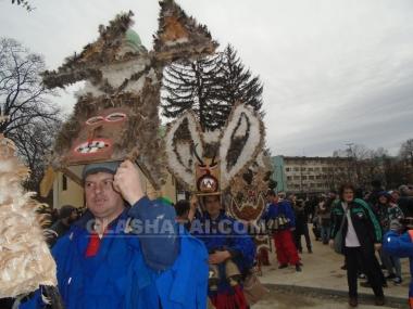 Фестивалът-2015 Снимка: 40